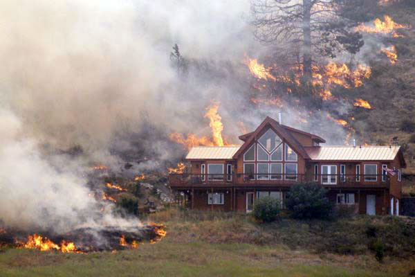 Brush Fire BMR Insurance Company